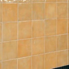 Emozioni CORALLO antiche fornaci d'agostino rivestimento ceramiche vietresi - edil siani